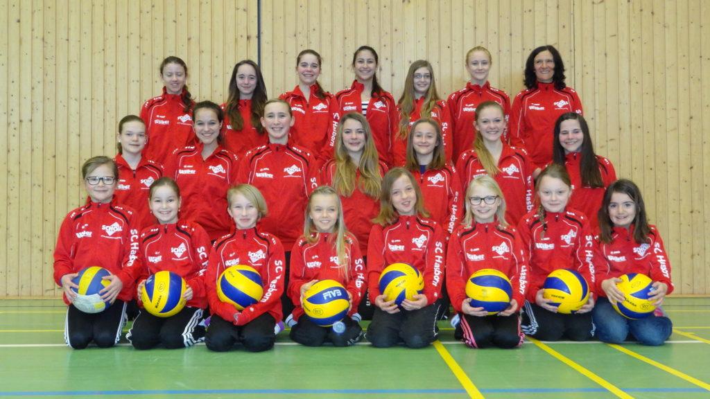 Volleyballjugend des SCH 2014
